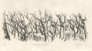 El bosque desdichado