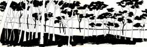 La respiración silenciosa de los árboles